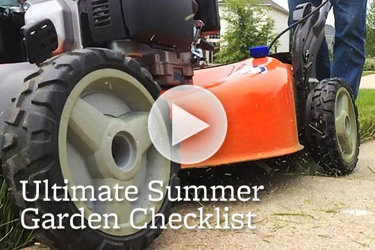 Ultimate Summer Garden Checklist