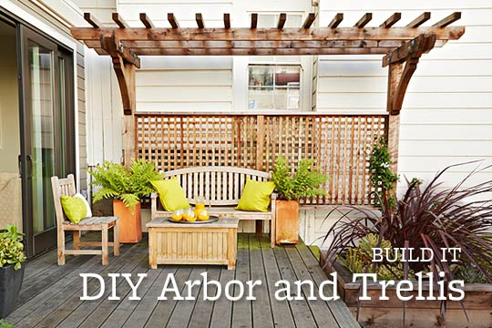 DIY Arbor and Trellis