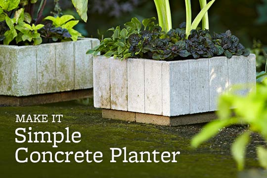Simple Concrete Planter