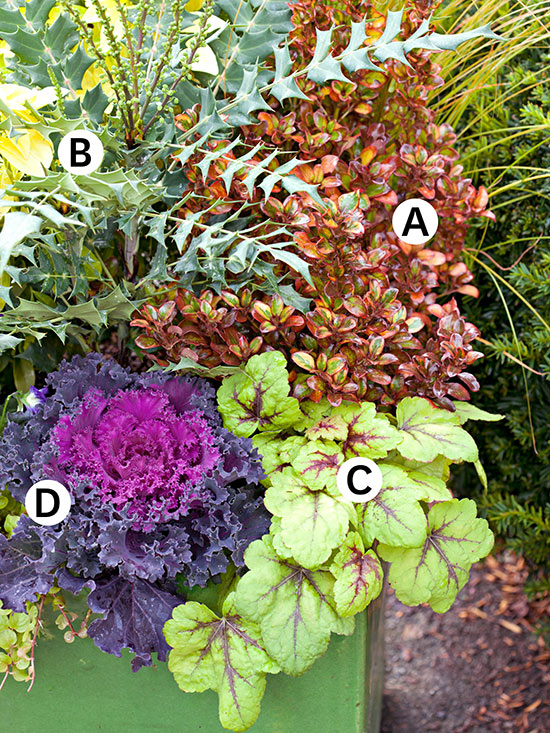 Fall Container Garden Recipes