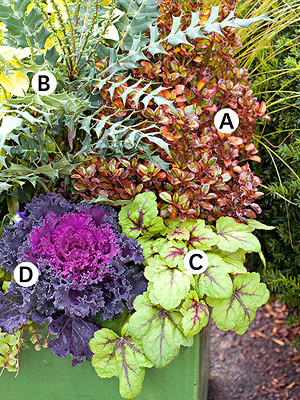 A gallery of beautiful container garden ideas  Garden ideaContainer Gardening Ideas For Flowers   Home design and Decorating. Gallery Of Beautiful Container Garden Ideas. Home Design Ideas