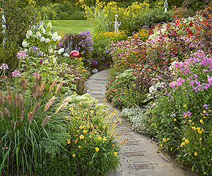Stone Garden Path Ideas with the deep gray and blue colored stones and pebbles implanted this garden path idea is amazing just walk on it barefoot and it will do an acupuncture Garden Path Ideas Mixed Material Walkways