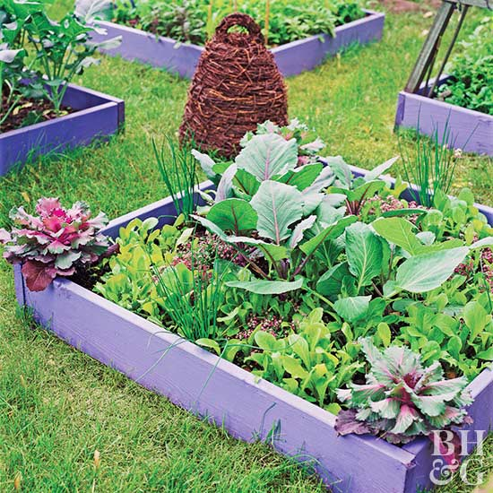 Small space vegetable garden plan ideas Better homes and gardens flower bed designs