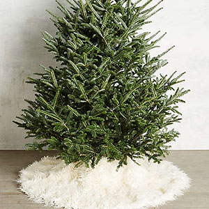 Don?t Forget the Christmas Tree Skirt!