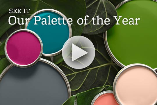 Our Palette of the Year