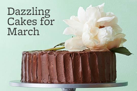 Dazzling Cakes for March