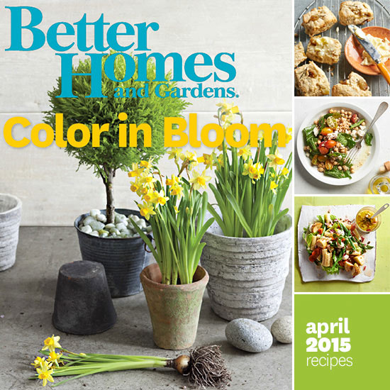 Better Homes and Gardens April 2015 Recipes