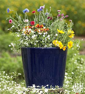 Containers for Pollinators