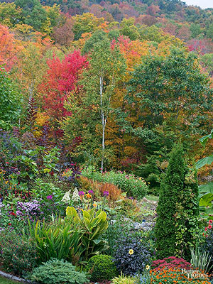 Fall Garden Design Lessons Part 92