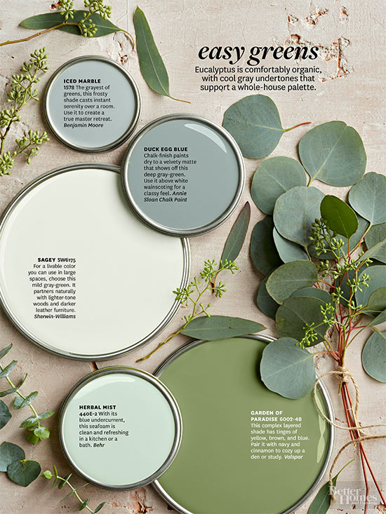 Better Homes and Gardens Paint Palettes