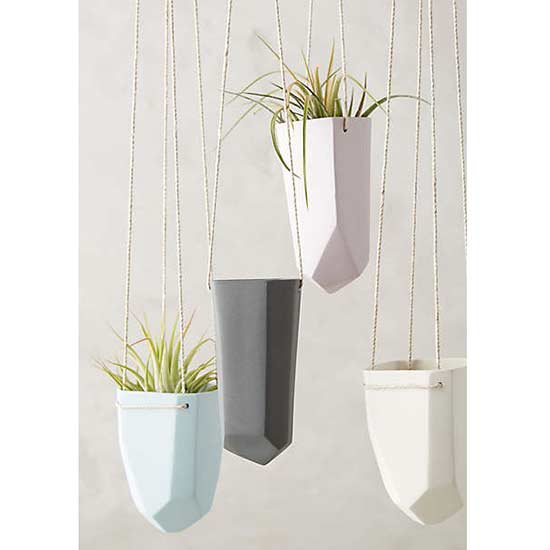 Welcome to the Jungle! Create Your Own Indoor Hanging Garden