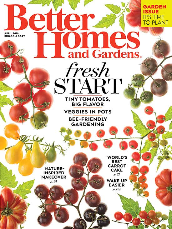 April 2016 for Better homes and gardens media kit