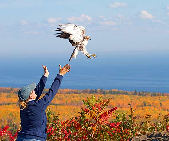 Two-Day Getaway to Duluth