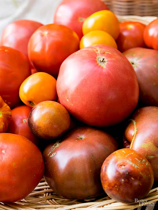 Heirloom Seeds: What They Are and Why You Should Plant Them