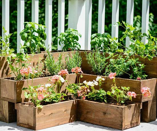 diy herb gardens for every space, Beautiful flower