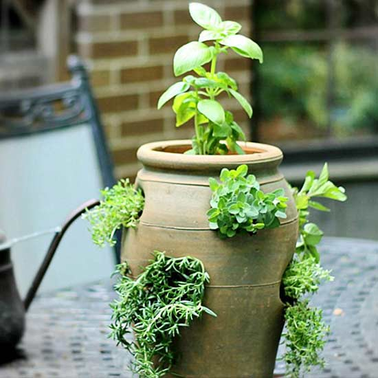 Quick And Easy DIY Container Herb Gardens