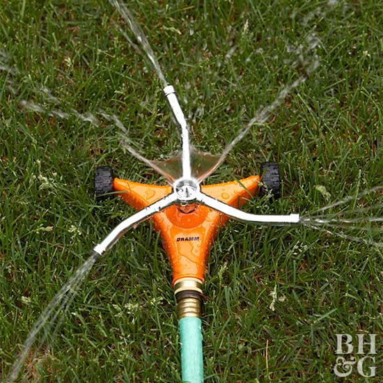 How Long to Water the Lawn Without Drowning It