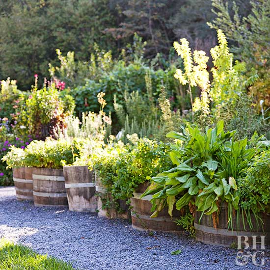 tips for planting herbs, Natural flower