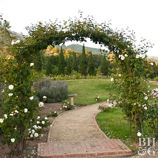Enter Here! A Rose Flushed Archway Invites Visitors To Enter And Admire A  Series Of Mediterranean Plantings. The Curving Pathway, Garden Trellis Arch,  ...