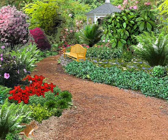 natural garden pathway with plants
