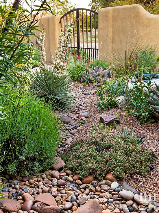 Create A Water Wise Landscape