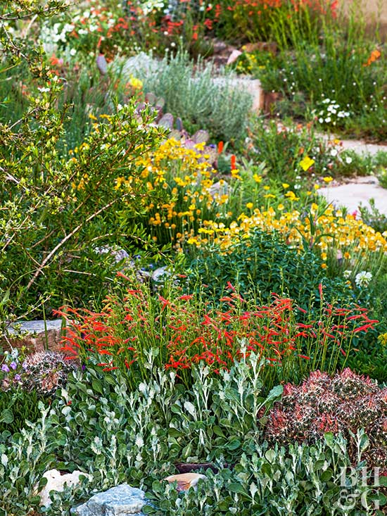 Create a water wise landscape for Water wise garden designs south africa