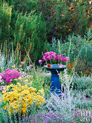 Tough as Nails Perennial Garden Plan