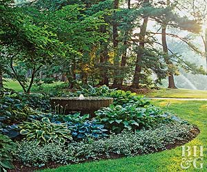 Shade Garden Ideas Zone 5 shade garden plans