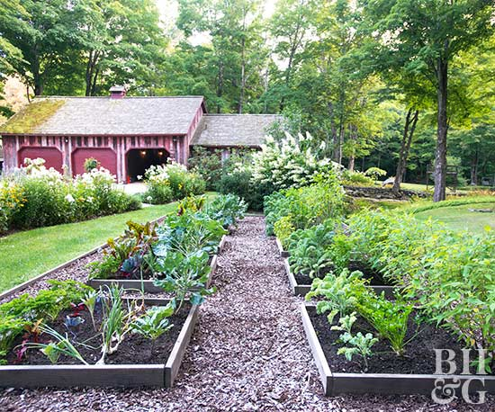 Do You Have A Limited Amount Of Space In Your Yard? Intensive Gardening Is  A Strategic Way To Plan Your Garden Beds To Maximize The Number Of Plants  ...