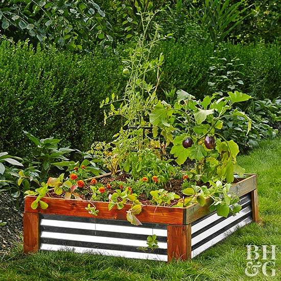 Why You Need A Raised Bed