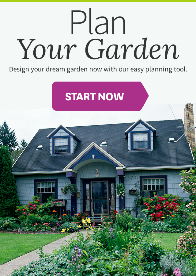welcome to plan a garden
