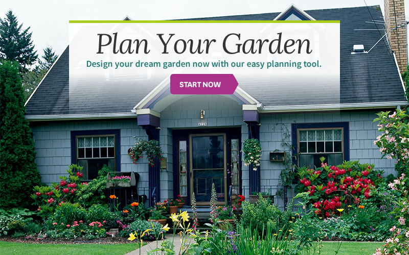 Free interactive garden design tool no software needed for Plan your garden ideas