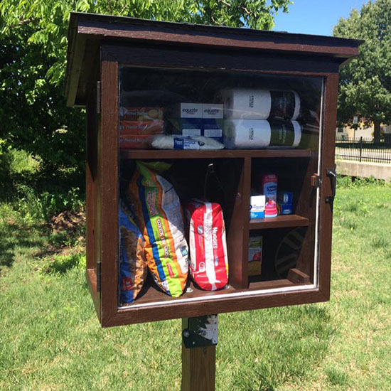 This Inspiring Woman Turned Little Free Libraries into Food Pantries
