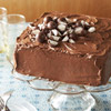 Chocolate Cake with Malt Topping