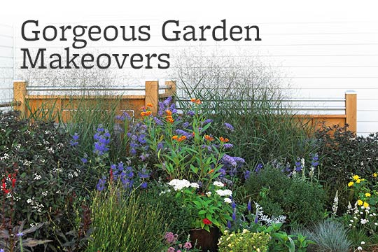 Gorgeous Garden Makeovers