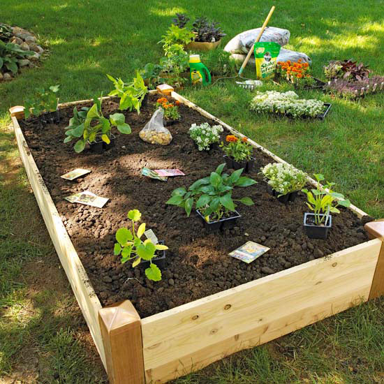 Design Tip: Keep Raised Vegetable Garden Beds Narrow