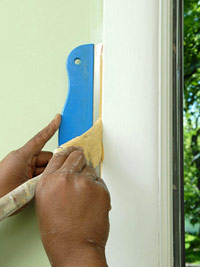 Paint with trim guard