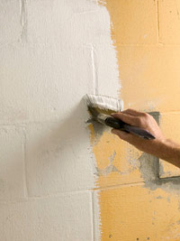 Brush on masonry paint