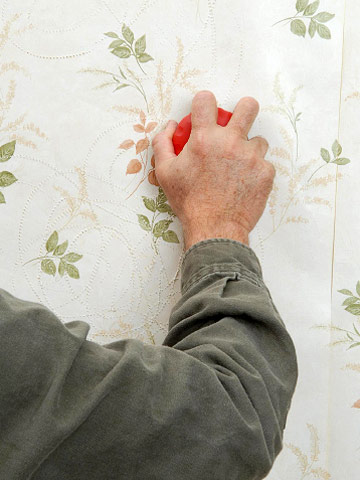 wallpaper removal tools. wallpaper remover: Step 1