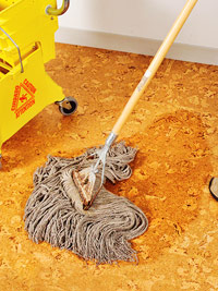 Damp-mop the floor