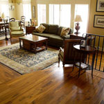 Wood Floor in Traditional Style Living Room