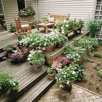 Deck with plants