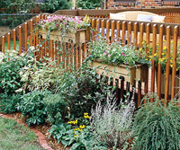 Side of deck with plants