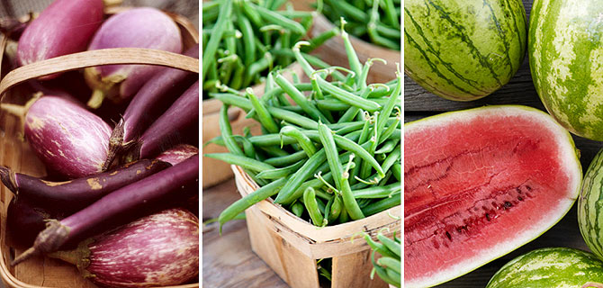10 Power Foods to Eat this Summer!