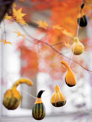 Gourds on a cord