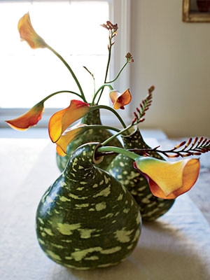 Speckled swan gourds as vases