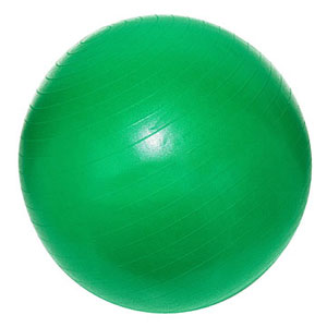 The Firm Fitness Ball