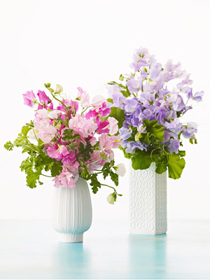 Sweet pea and geranium flower arrangement