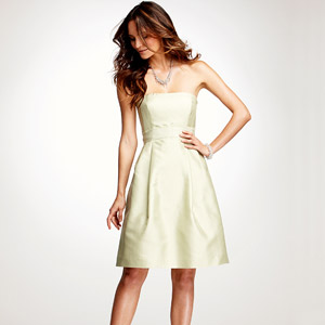 Ann Taylor Silk Dupioni Strapless Dress