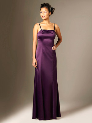 The Limited Long Elegant Dress